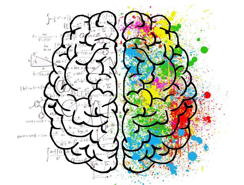 neuromarketing_la foto mostra il disegno di un cervello