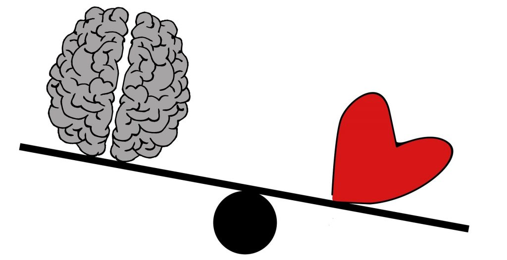 Razionalità o emozioni? La foto mostra un cervello e un cuore